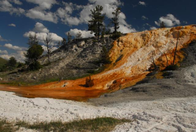 Mamoth Hot Springs Terrace, Yellowstone National Park