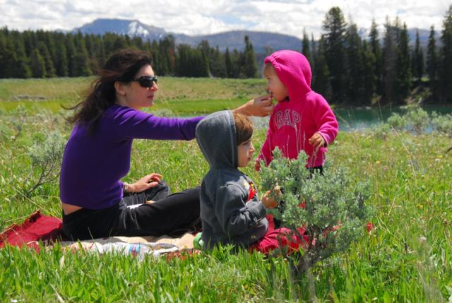 Picnic at Storm Point Trailhead, Yellowstone National Park